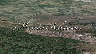 Momente in Andalusien